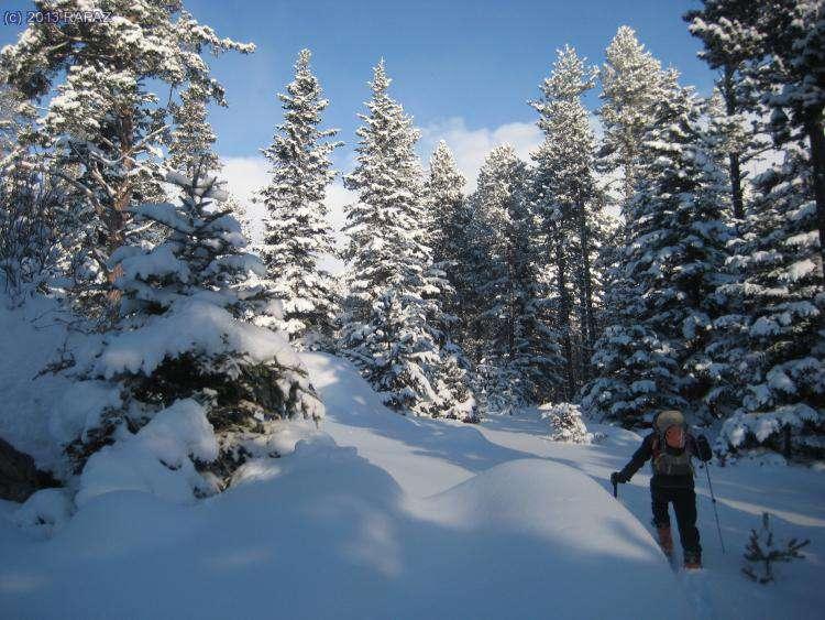 1era. Trobada de la Secció d'Esquí C.E. Madteam