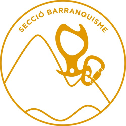 Curs de Barrancs - nivell 2