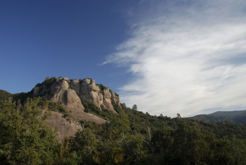 Excursió geològica i naturalística a St Llorenç del Munt i serra de l'Obac