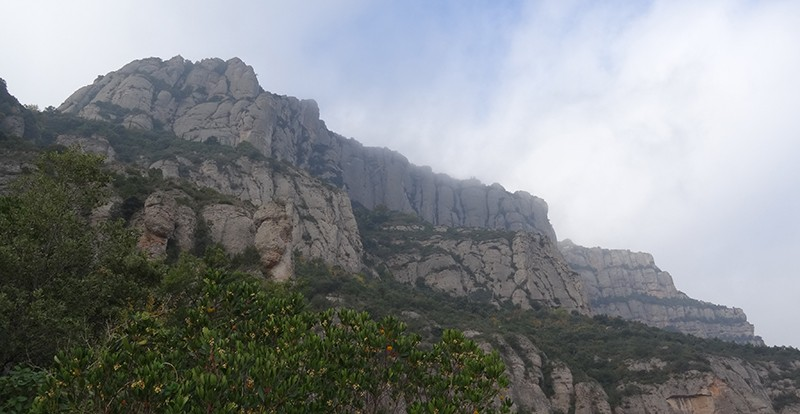 trobada secció corredors muntanya