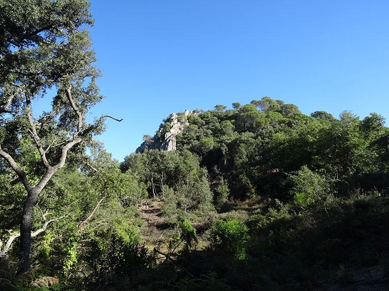 Roques del Rei 897 m