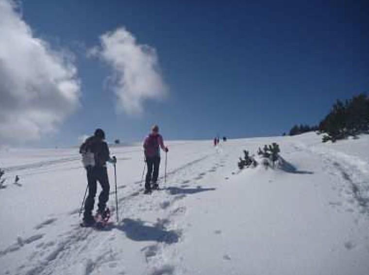 Raquetes de neu al Port del Comte
