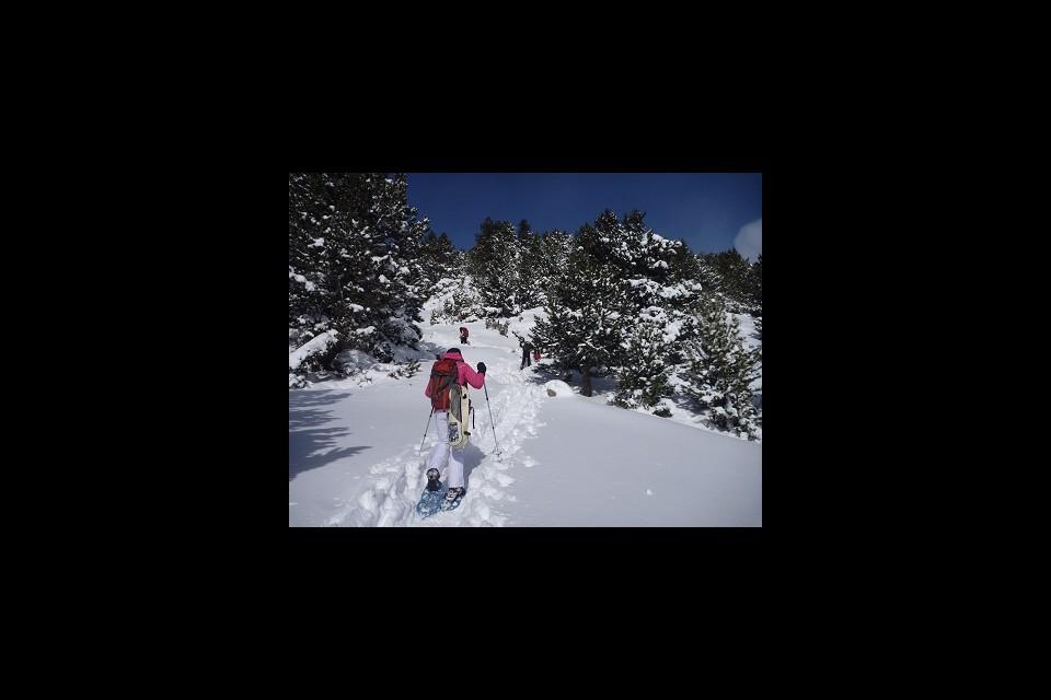 Experiència Nòrdica amb Raquetes de neu